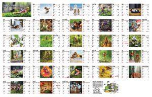 Náhled všech stránek stolního kalendáře