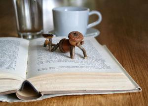 Dubánek čtenář – pohlednice pro milovníky knih