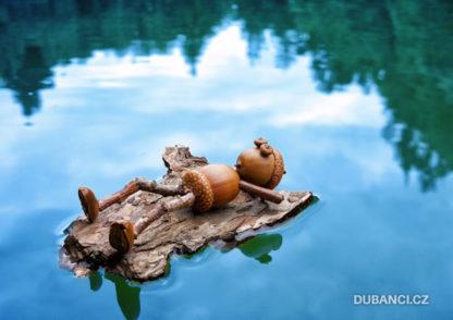 Dubánek na vodě