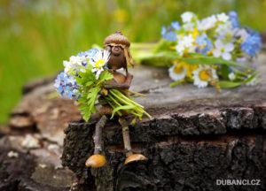 Dubánčí pohlednice na tábor – duběnka s květinami na louce