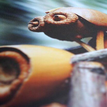 Detail foto obrazu