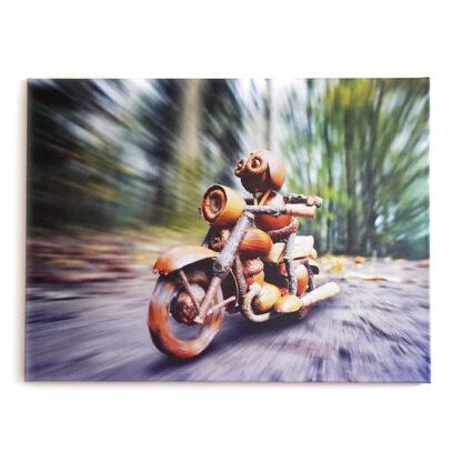Fotoplátno dubánka na motorce