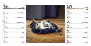 Únorová stránka stolního kalendáře s dubánky