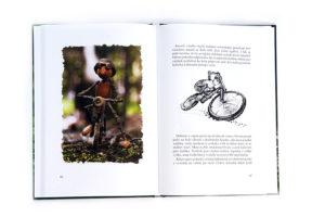 Dubánci, příběhy jednoho roku – knížka s dubánky pro děti