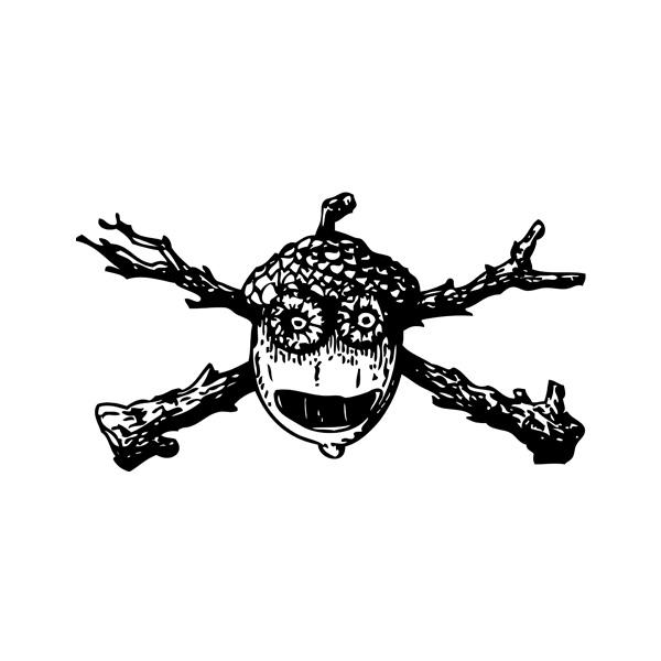 Pirátský motiv