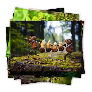 Various funny postcards with my acorn elves