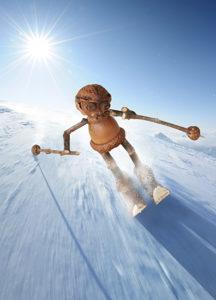 Zimní pohled s dubánkem lyžařem