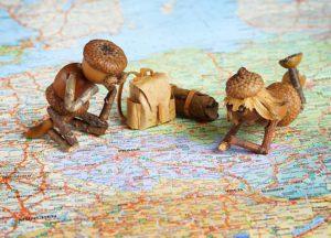 Dubánek a duběnka plánují dovolenou