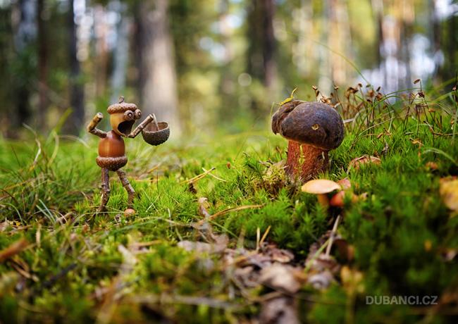 Nadšený houbař