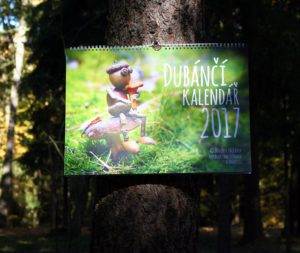 Nástěnný kalendář s velkými fotografiemi dubánků