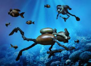 Letní pohlednice s dubánky pod vodou