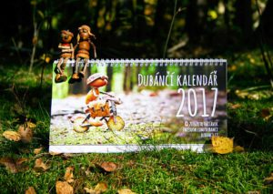 Stolní kalendář s dubánky
