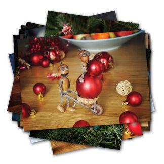Sada nových vánočních pohlednic s dubánky