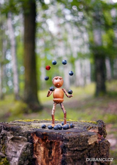 Žonglující dubánek